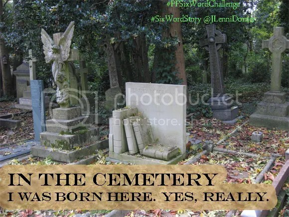 In The Cemetery #StoryPrompt #PFSixWordChallenge #SixWordStory @JLenniDorner Writing Prompt