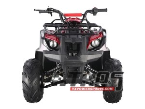 Buy the TaoTao ATA125 D ATV | Kids 120cc Four Wheelers