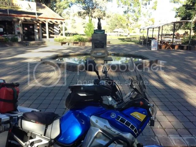 Super Tenere Motorcycle at Dog on Tuckerbox