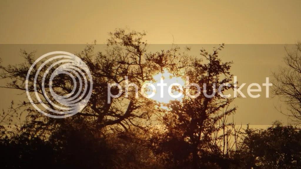 050113 vs sunrise