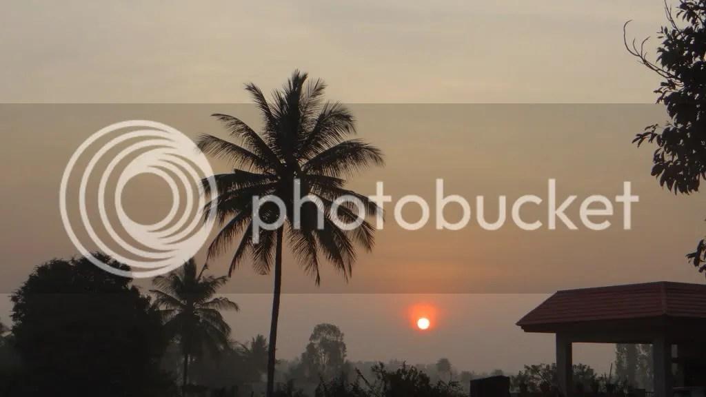 060113 bgz  sunrs palm