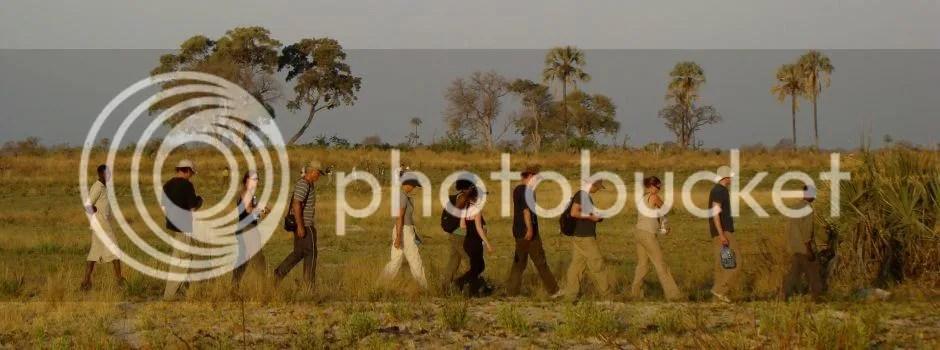 african safari options