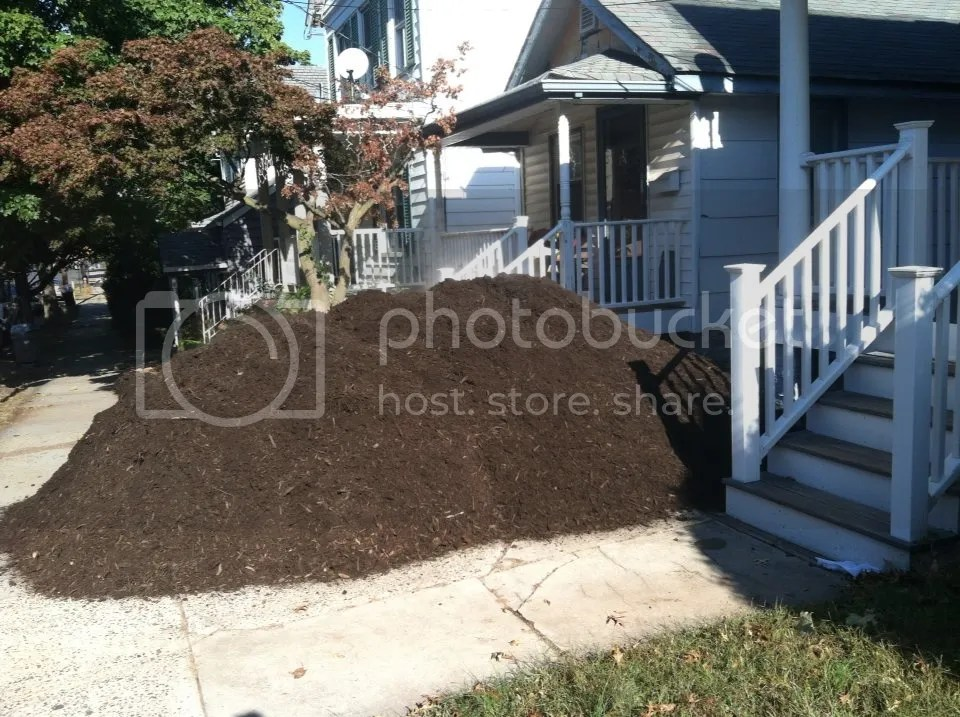 Shredded Leaf Mulch Sale