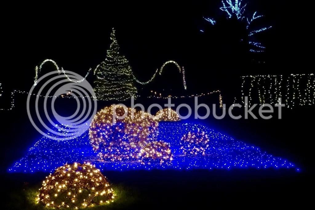 photo Ford House Christmas 14_zpszxcsmlqu.jpg