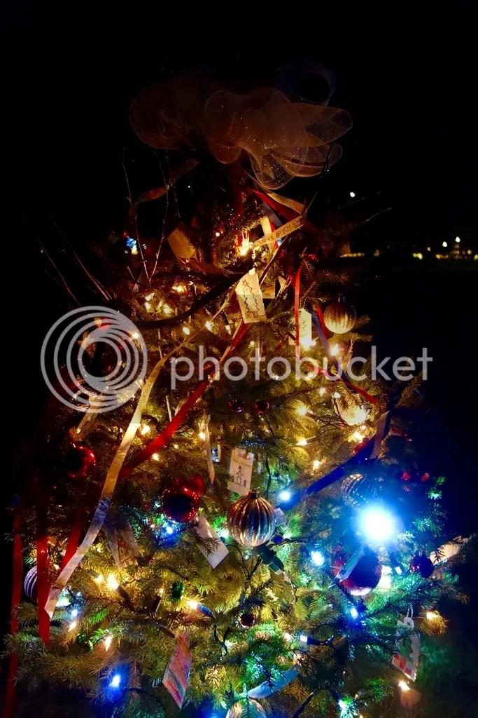 photo Ford House Christmas 2_zpshsismkur.jpg