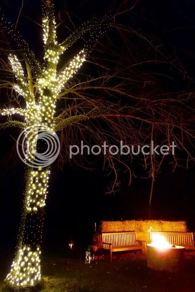 photo Ford House Christmas 4_zps5kjb00ya.jpg