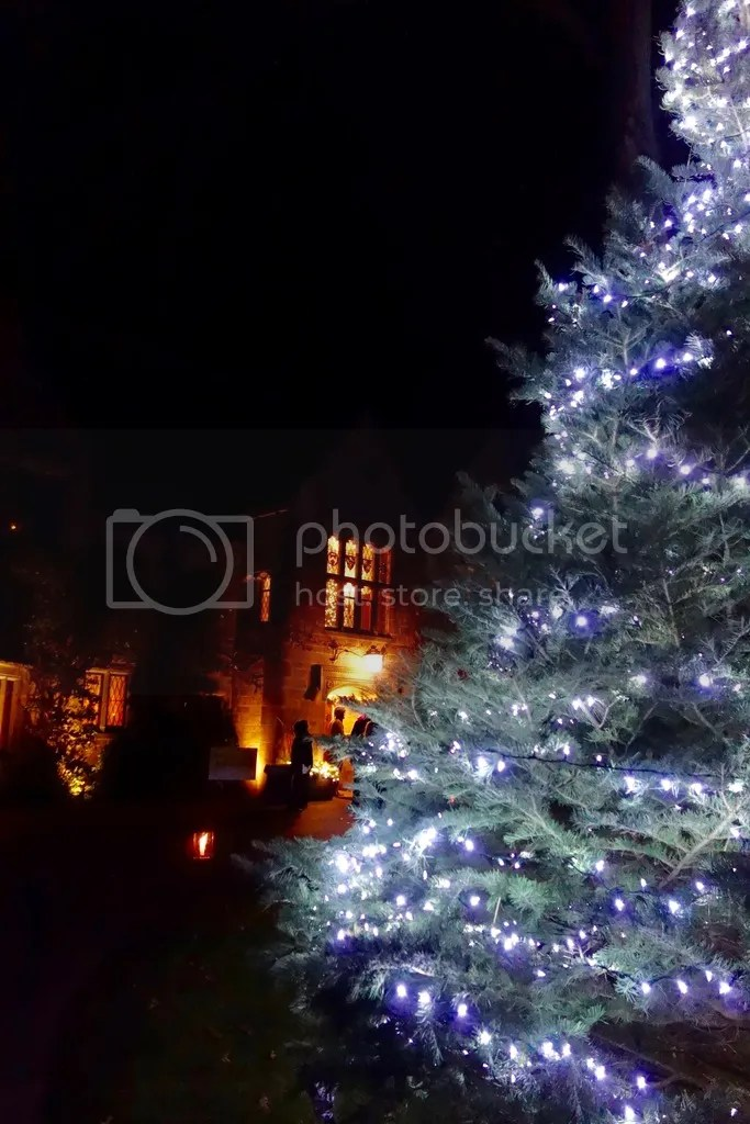 photo Ford House Christmas 8_zpsz3wh0urq.jpg