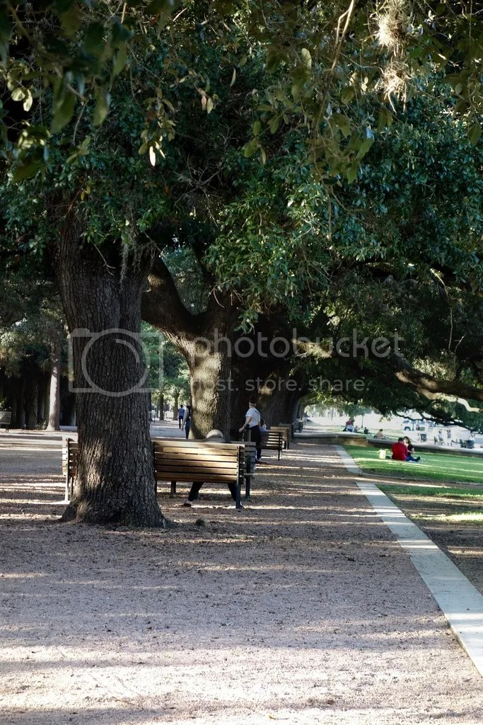 photo Hermann Park Houston 10_zpsgoe62lgt.jpg