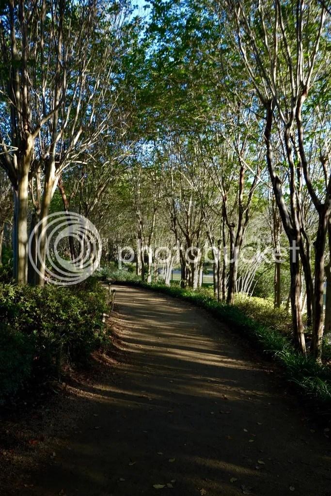 photo Hermann Park Houston 19_zpsc2bmo44h.jpg