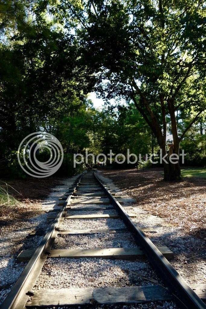 photo Hermann Park Houston_zpskrgvzgls.jpg