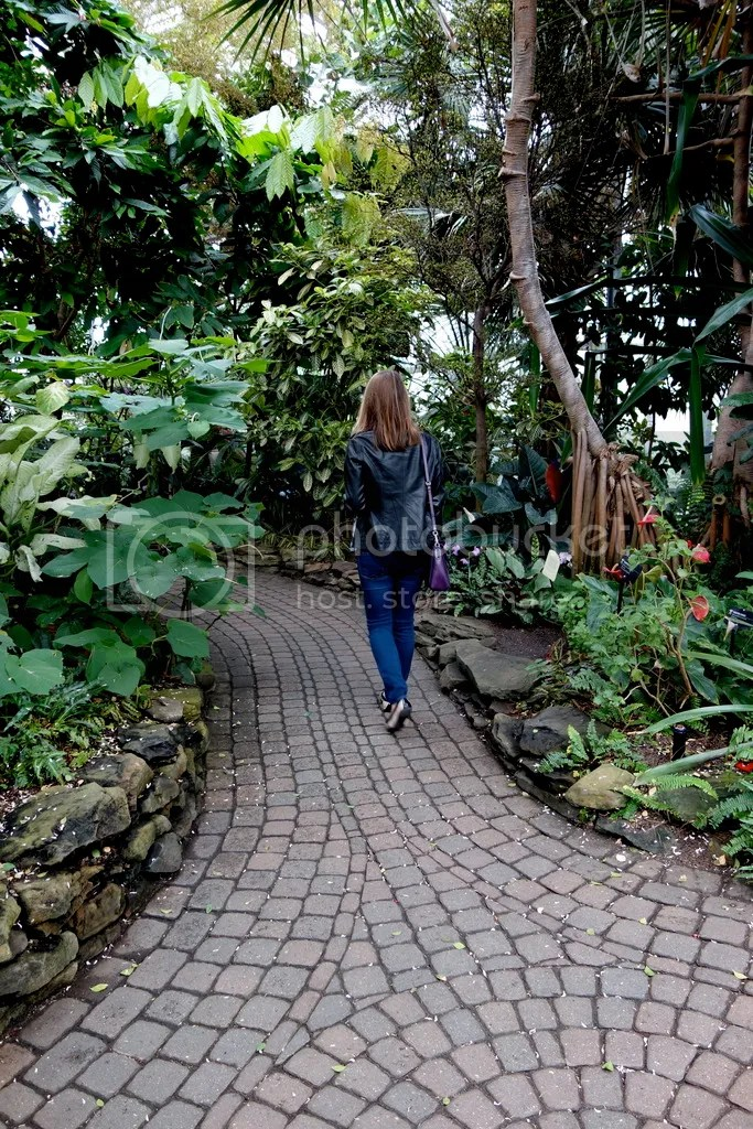 photo Butterfly House Meijer Gardens_zpsaex7s5un.jpg