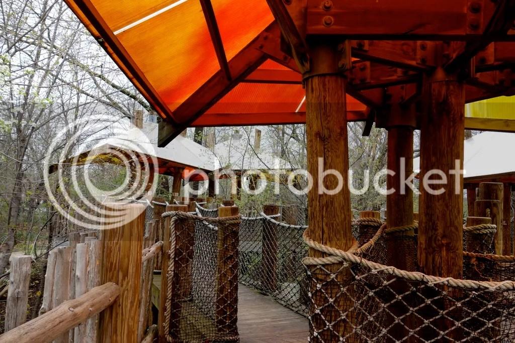 photo Meijer Gardens Butterfly Tree House_zps8cvxzb4t.jpg