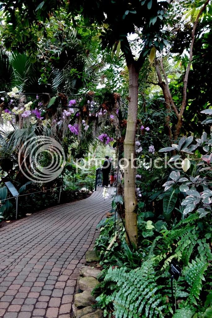 photo Meijer Gardens Path_zpszohgy0my.jpg