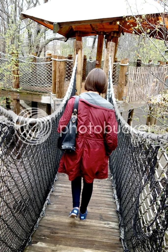 photo Meijer Gardens Wooden Bridge_zpskwiwgih7.jpg