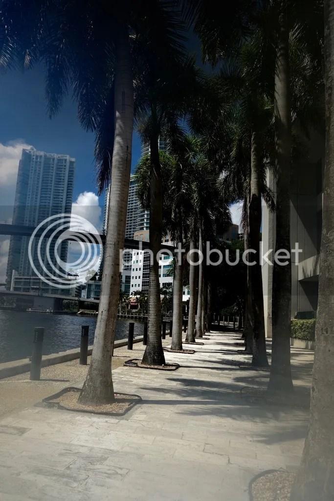 photo Miami Riverfront_zpsjqxlgvyd.jpg