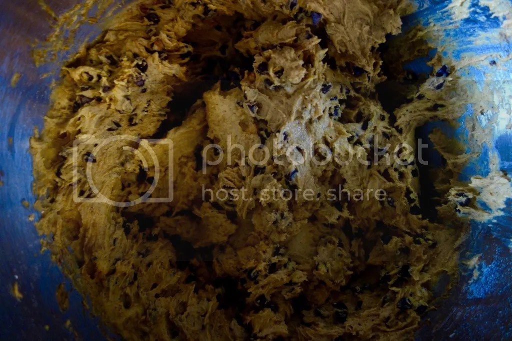 photo Pumpkin Chocolate Chip Cookies 6_zps1cimlfgi.jpg