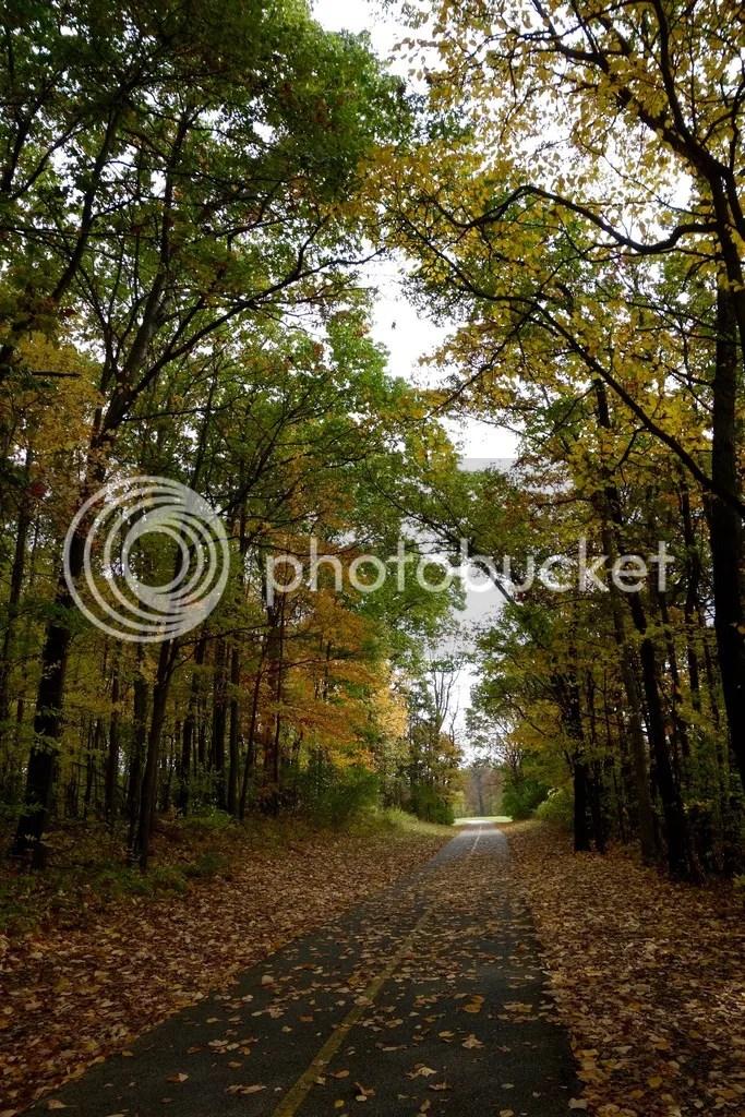 photo Stony Creek Park MI 15_zpsleisxcsv.jpg