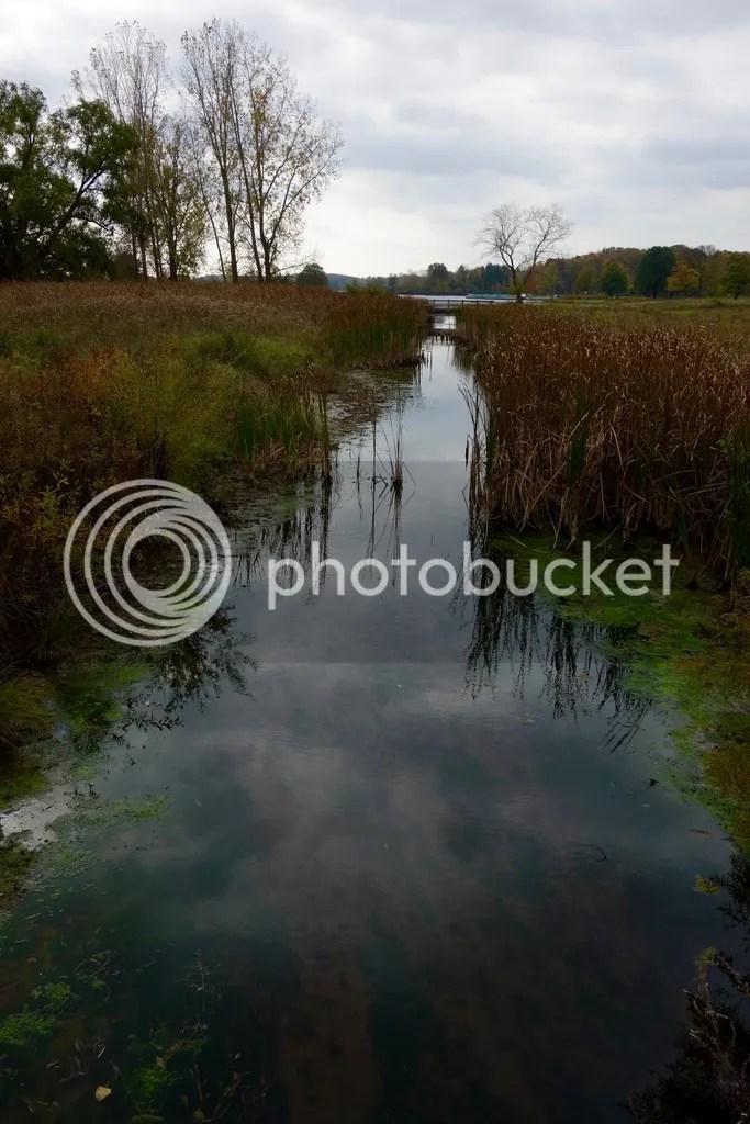 photo Stony Creek Park MI 23_zpsr5u54kxu.jpg