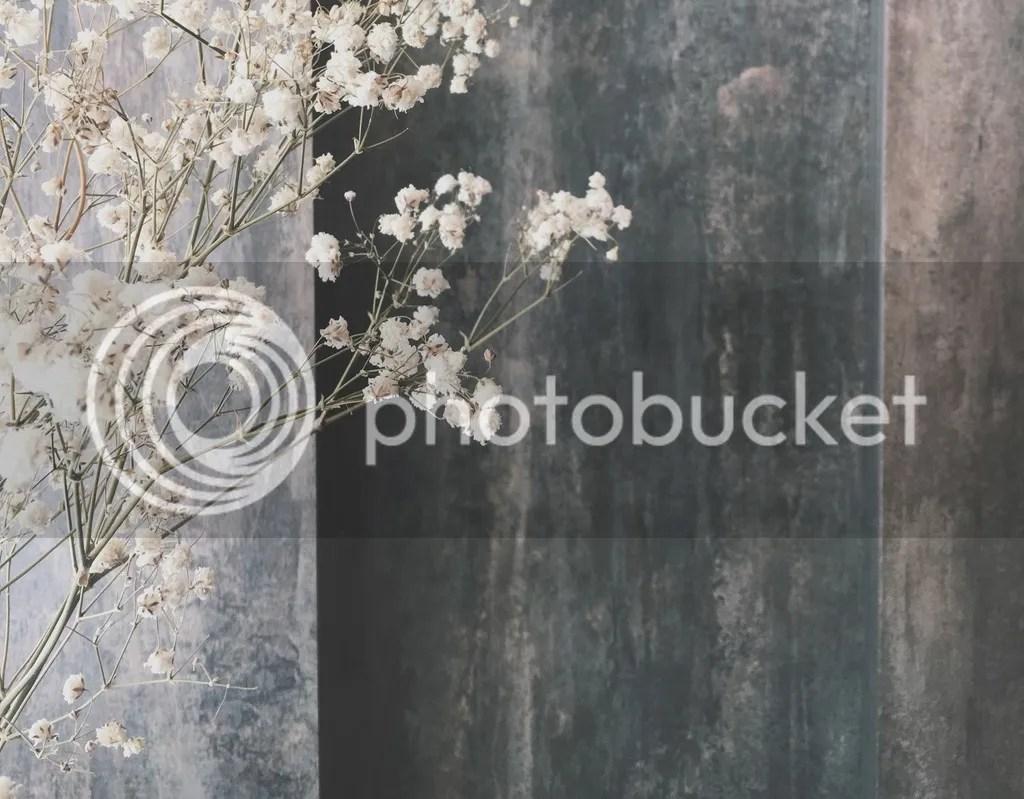 photo IMG_8616_zpsla3xud72.jpg