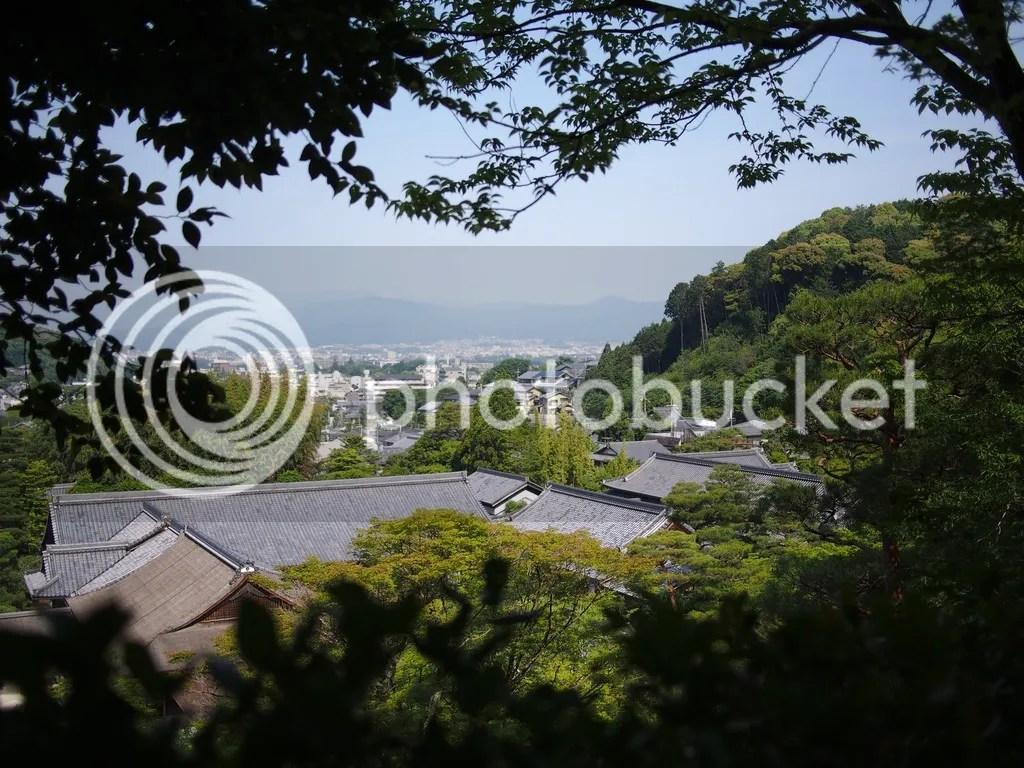 photo P1010396_zps4sjmipcy.jpg