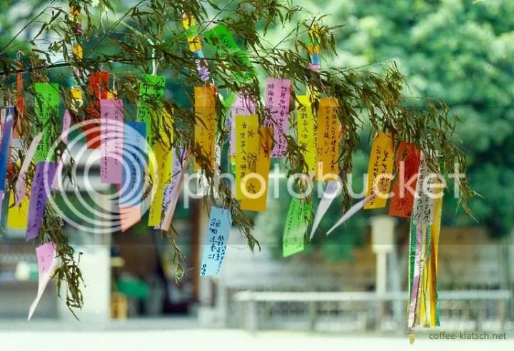 Tanabata: tanzaku (短冊) colgando de ramas de bambú (Japón)