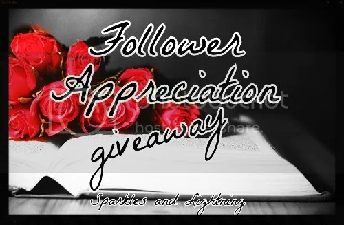 Sparkles and Lightning Follower Appreciation Giveaway
