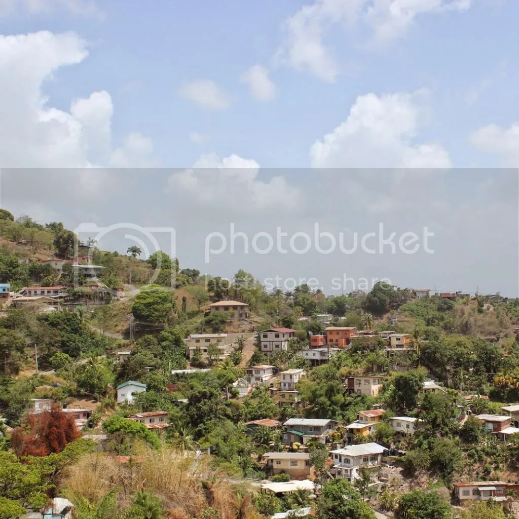 Seeing More of Trinidad