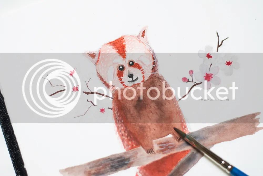 red panda illustration tutorial