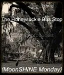 The Honeysuckle Bus Stop