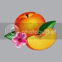 photo 884cae96-bc99-4e5c-b4c8-6e774a18c020_zps0dd6831c.jpg