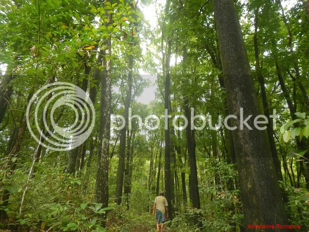 Valderama Nature Park