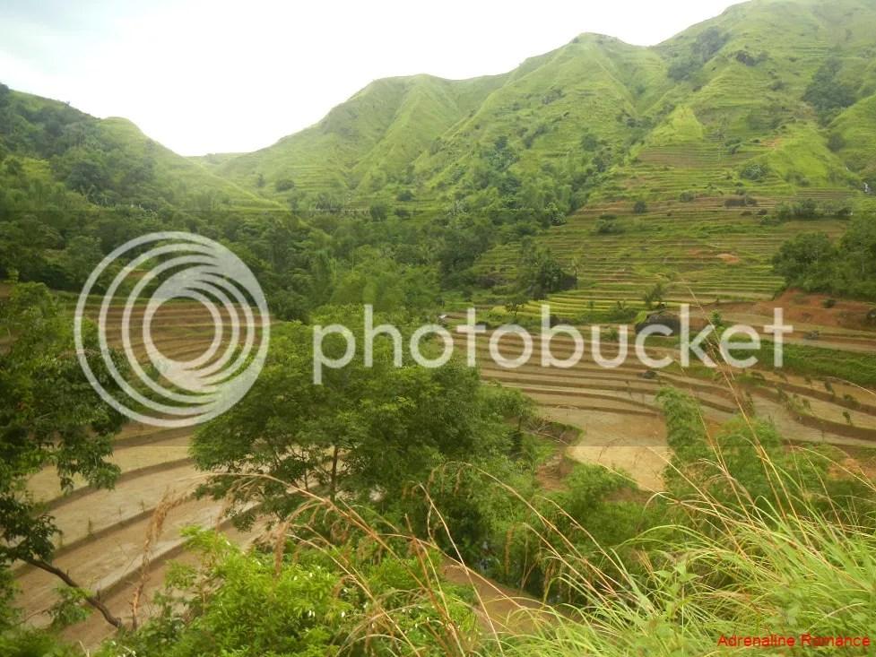 Antique Rice Terraces