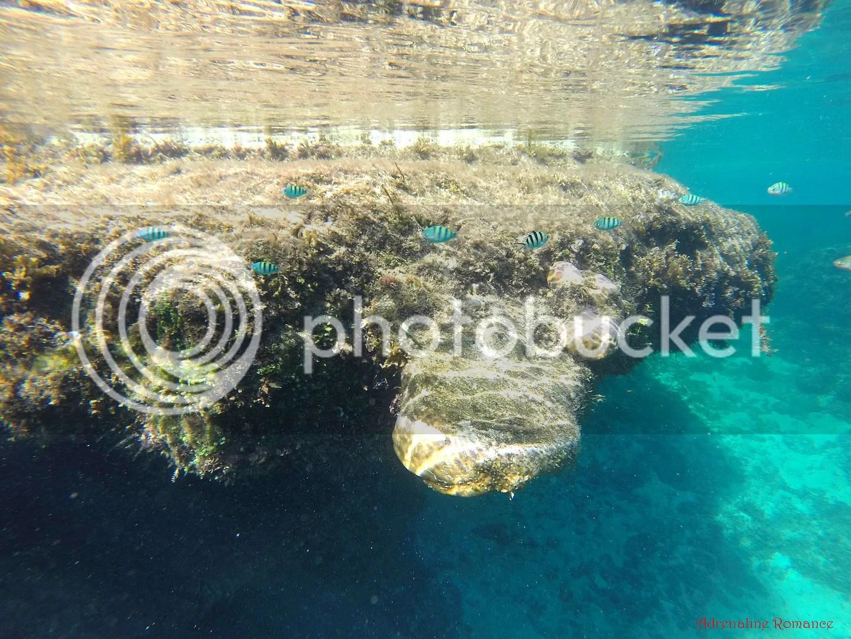 Magpupungko Tide Pools