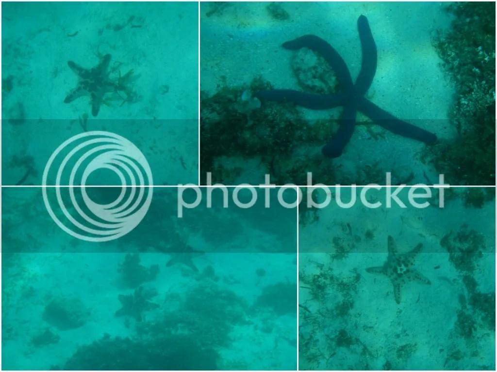 Hilutungan Marine Sanctuary