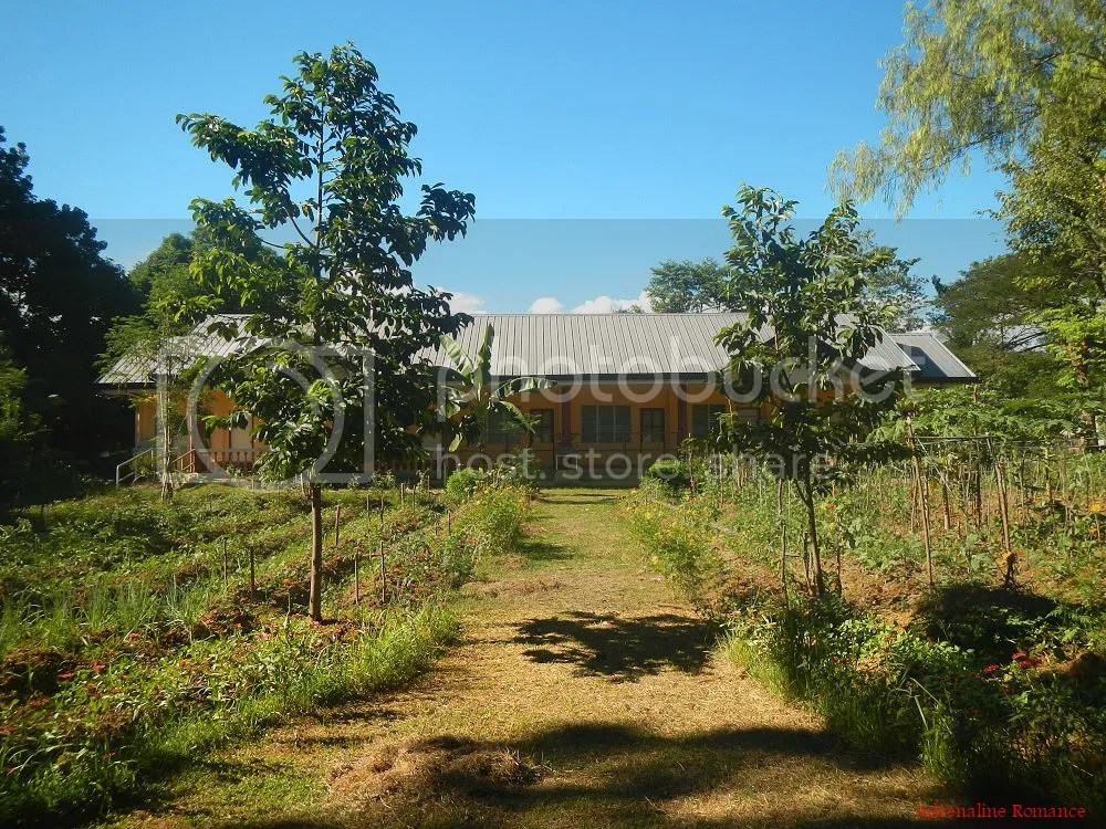Cebu Southern Ecological Farm