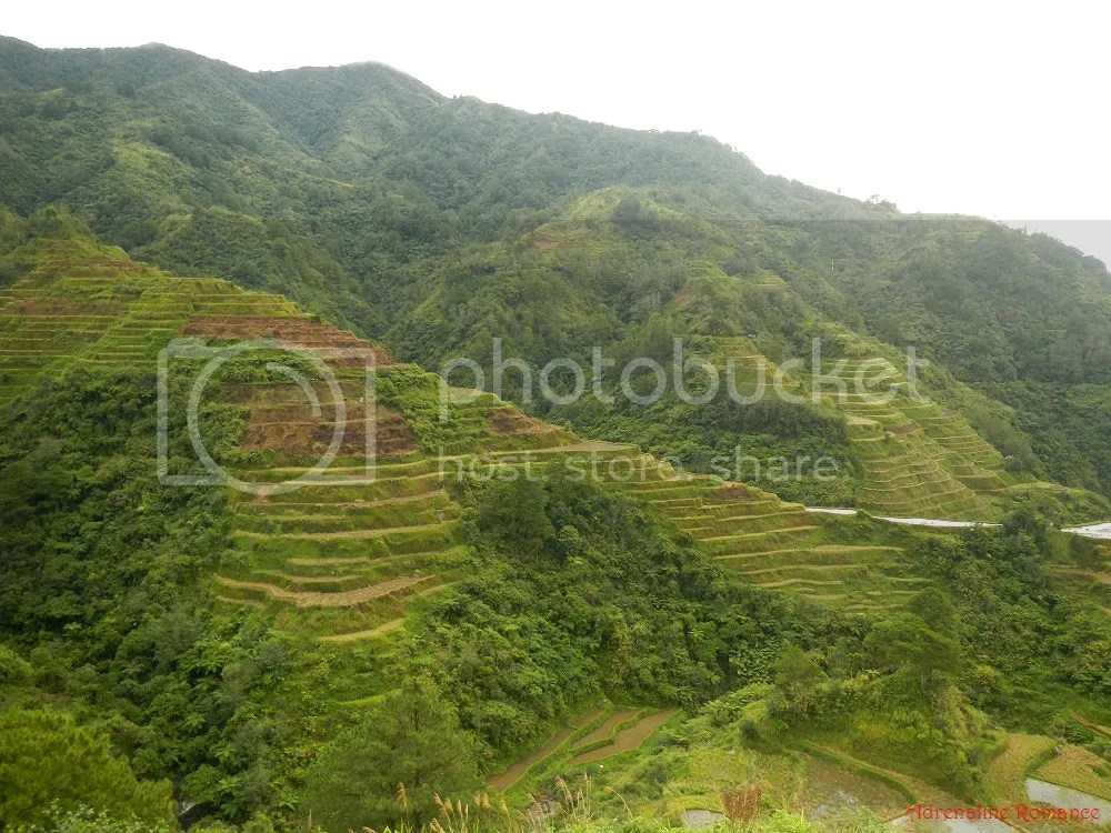 Banaue Rice Terraces