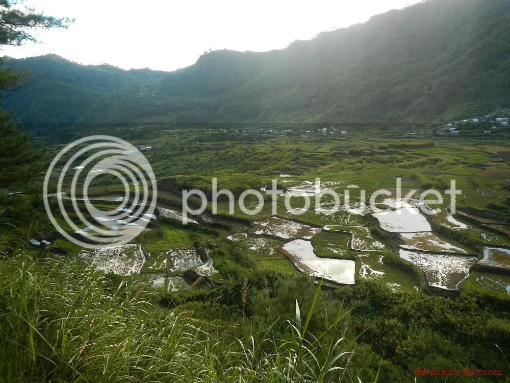 Kapay Aw Terraces Sagada
