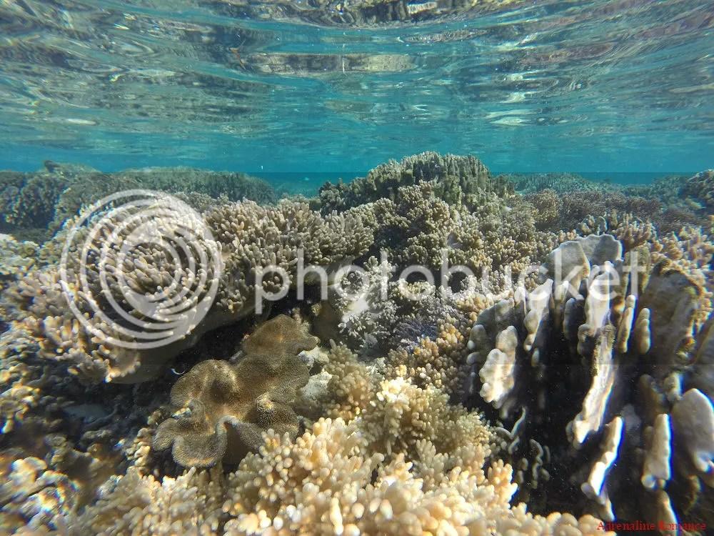 Colase Marine Sanctuary