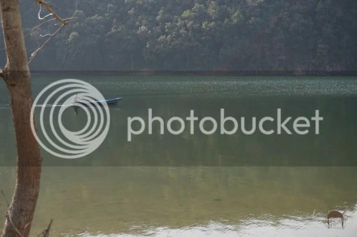 photo 10_zps86ms5lar.jpg