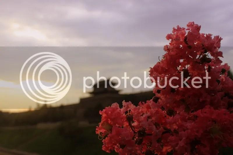 photo IMG_7421_zpsb5bde9c1.jpg