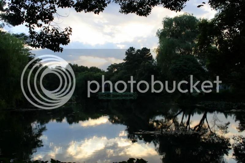 photo IMG_7694_zps63c59aa0.jpg