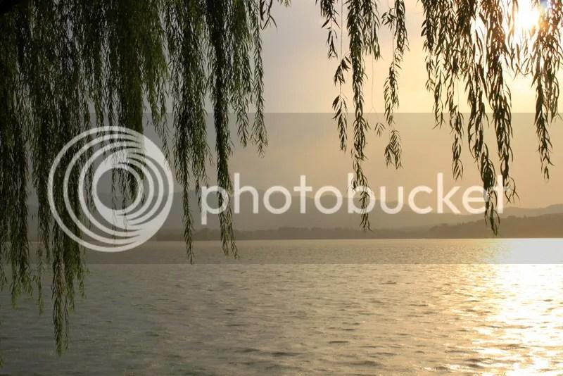 photo IMG_8084_zps79902c2b.jpg
