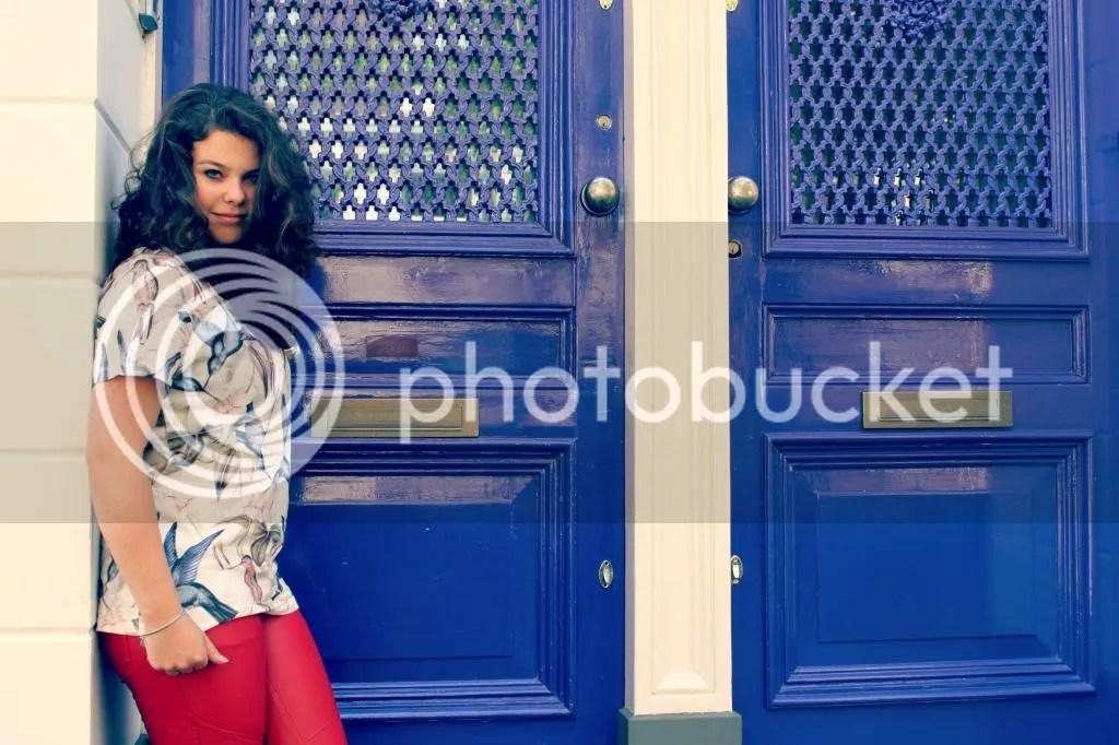 photo doors02_zps9737b7ea.jpg