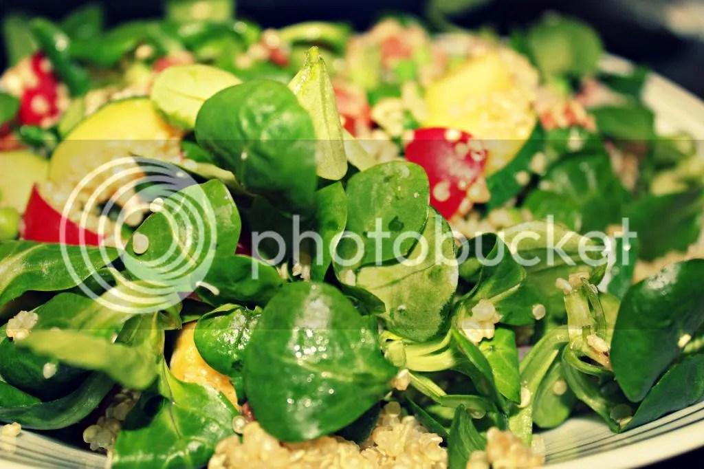 photo quinoa02_zpsaaa78d15.jpg