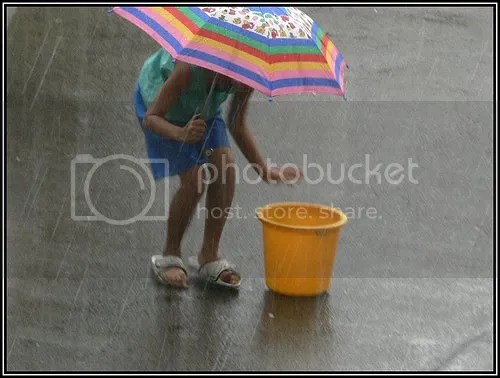 Cochin rain playing
