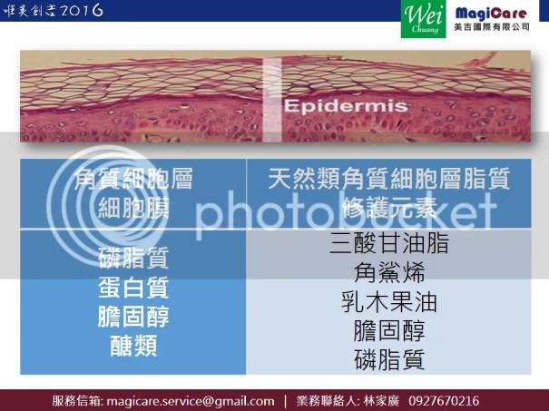 天然類角質細胞層脂質修護元素_Magicare_WeiChung