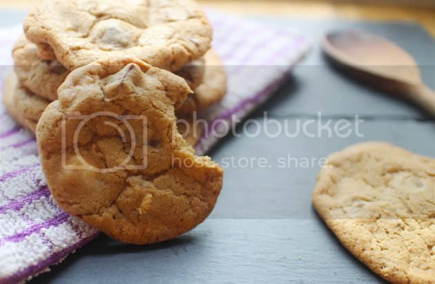 photo Ultimate Choc Chunk Cookies 11_zpsxafi791w.jpg