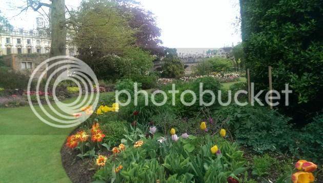 photo 2014-04-26162642_zpsd2ec05b5.jpg