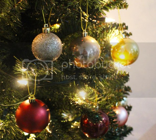 photo Christmas 2016 19_zps9sx1dqvj.jpg