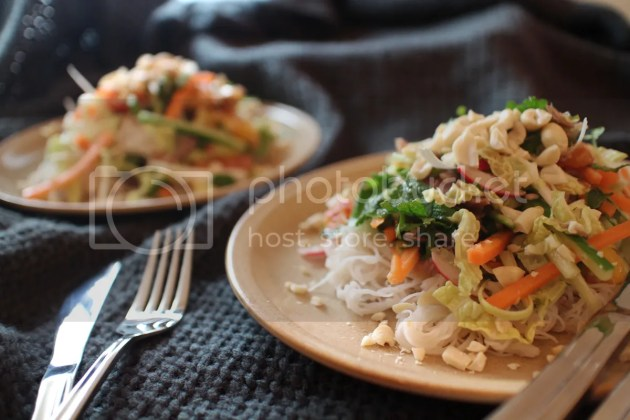 photo Blood Orange Noodle Salad with Duck or Turkey 5_zps6aic4lif.jpg